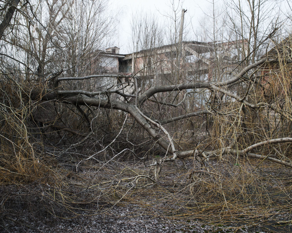 The ghost city of Poliskie, in the forbidden zone of Chernobyl. the nature gnaws little by little the vestige of the human civilisation. This city of 20 000 citizens was evacuated ten years after the nuclear catastrophy. today, around 10 peoples live here.