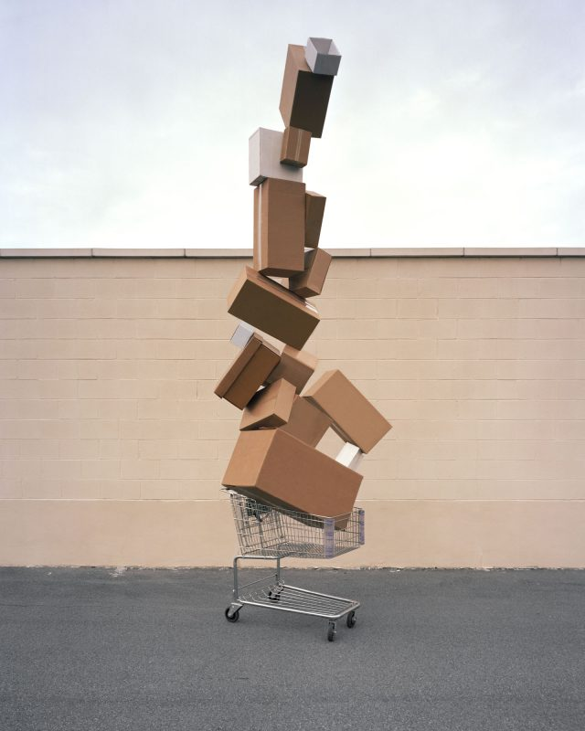 Shopping Totem ©David Welch copy